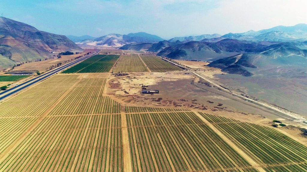 Proyecto riego tecnificado Huarmey